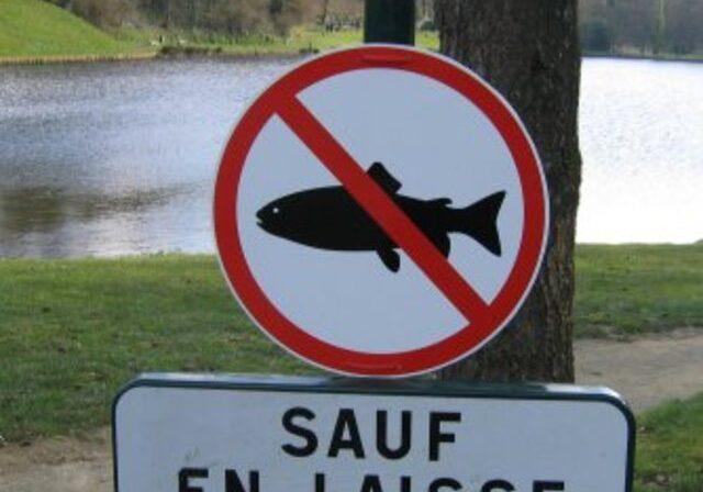 2-panneau-peche-du-poisson-interdite-sauf-en-laisse