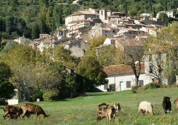 Seillans_village
