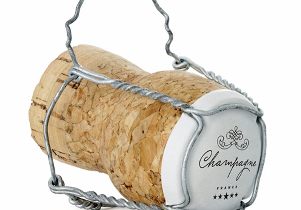 champi1