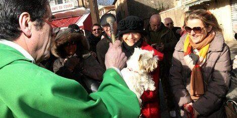 ©PHOTOPQR/NICE MATIN/Philippe arnassan  AUPS LE 26 01 2014 ; fete de la truffe  Aups  demonstrations de chiens truffiers, de truie truffière, benediction de animaux
