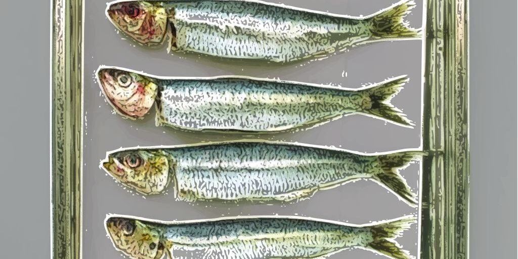 sardines-in-a-can-pop-art2