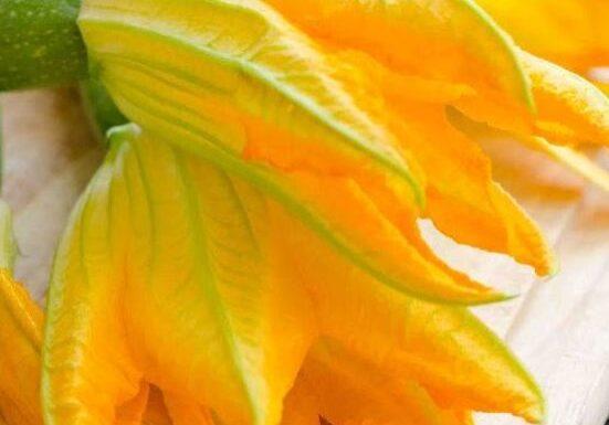 verse fleur